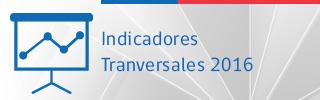 Indicadores transversales 2015